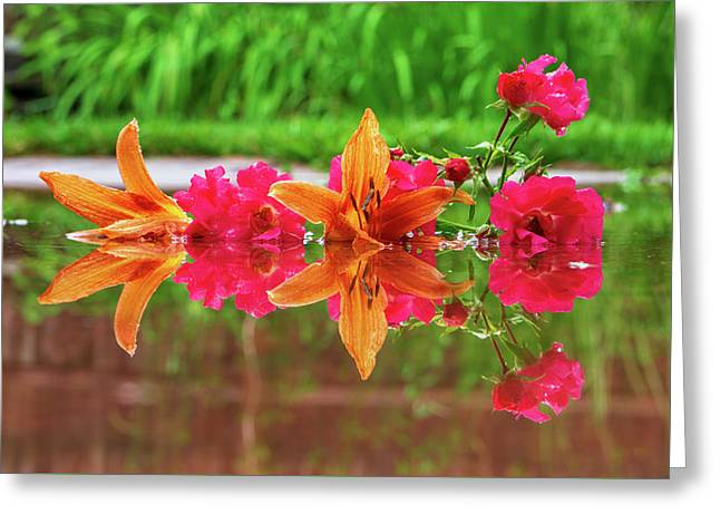 Lilies And Roses Reflection Greeting Card