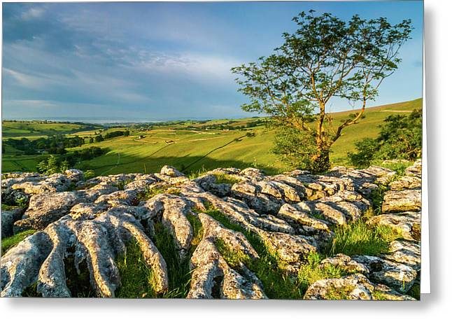 Limestone Pavement, Malham Cove Greeting Card by David Ross