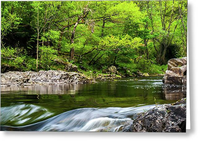 Linn Of Tummel Greeting Card by David Ross