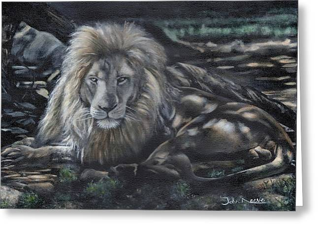 Lion In Dappled Shade Greeting Card