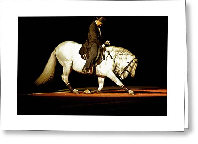 Greeting Card featuring the photograph Lipizzan by Catherine Sobredo