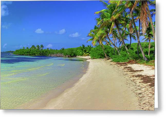 Living On An Island Greeting Card