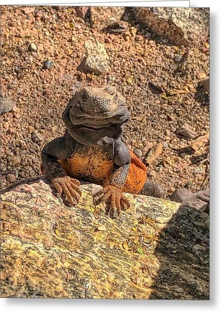 Lizard Portrait  Greeting Card