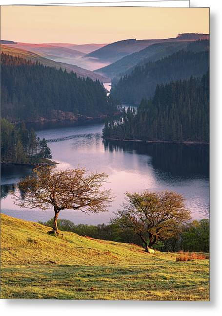 Greeting Card featuring the photograph Llyn Brianne Sunrise by Elliott Coleman