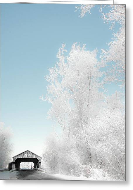 Greeting Card featuring the photograph Lockport Covered Bridge 2 by Michael Arend
