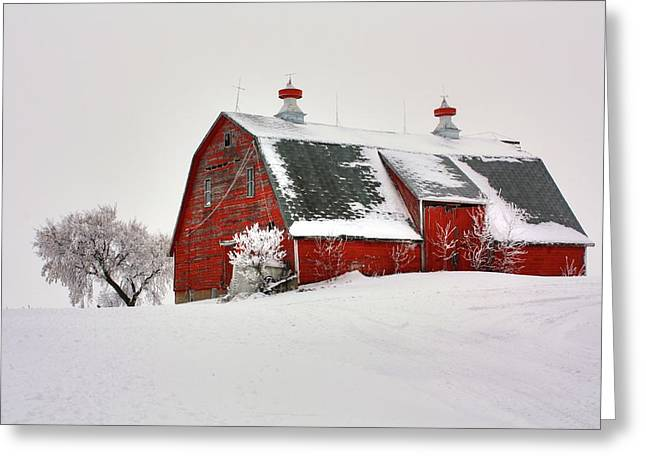 Lone Barn Greeting Card