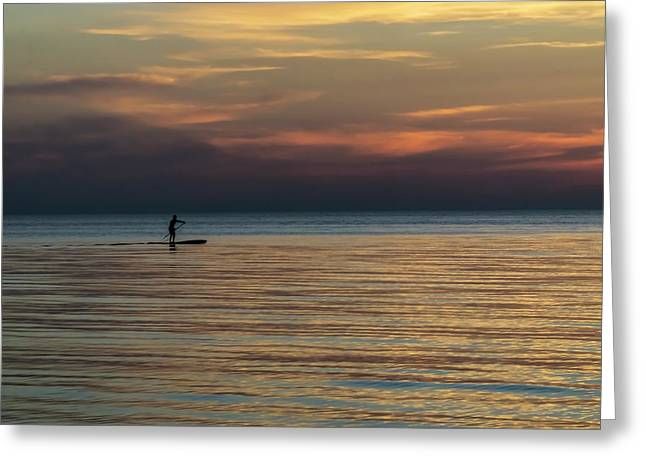 Stand up paddling greeting cards fine art america lone stand up paddler just before sunrise greeting card m4hsunfo