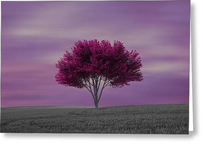 Lonely Tree At Purple Sunset Greeting Card