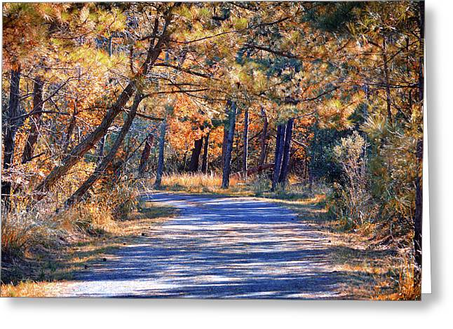 Greeting Card featuring the photograph Long And Winding Road At Gordon's Pond by Bill Swartwout Fine Art Photography