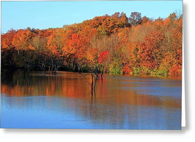 Greeting Card featuring the photograph Looking Out Over Alum Creek by Angela Murdock