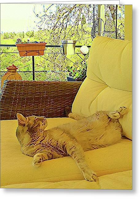 Greeting Card featuring the photograph Lounging Around by Dorothy Berry-Lound
