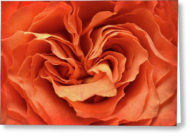 Love In Motion Greeting Card