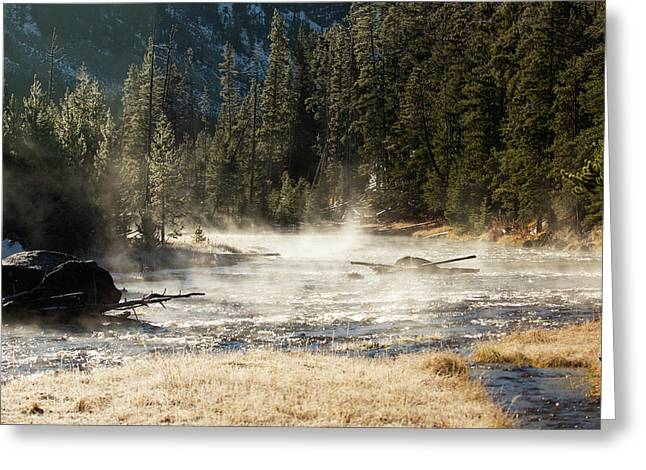Madison River Morning Greeting Card