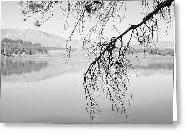 Magic Trees. Foggy Sunrise At The Lake. Greeting Card