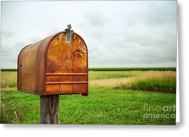 Mailbox  Greeting Card
