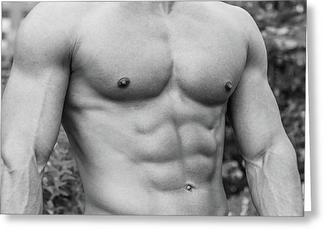 Male Torso 2 Greeting Card