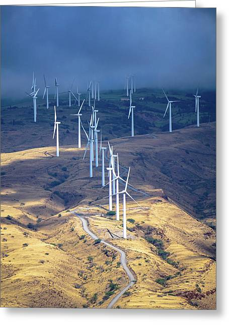 March Of The Windmills Greeting Card