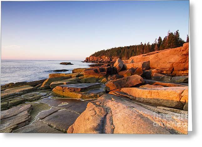 Marine Landscape In Acadia, Park Loop Greeting Card