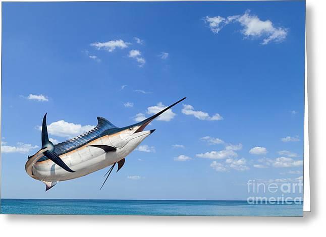 Marlin - Swordfish,sailfish Saltwater Greeting Card