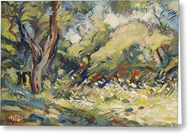 Marmari Olive Orchard Paxos Greeting Card