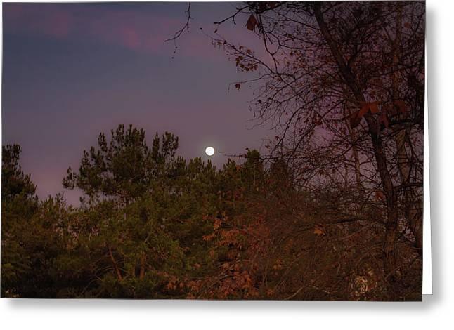 Marvelous Moonrise Greeting Card