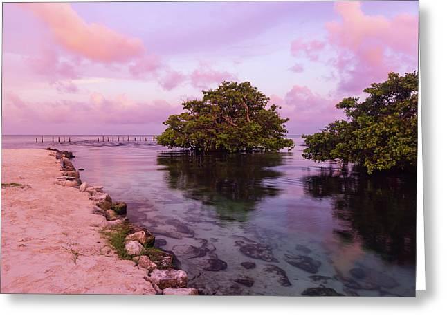 Mayan Sea Reflection Greeting Card