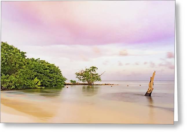 Mayan Sea Greeting Card