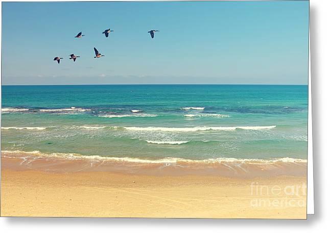 Mediterranean Sea And Sand Beach Greeting Card by Protasov An
