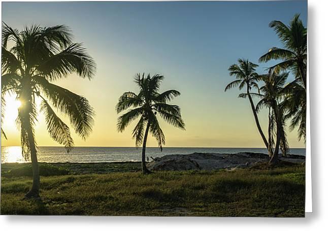 Mexico Palm Tree Sunrise Greeting Card