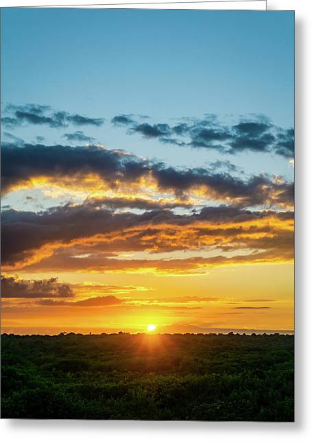 Mexico Sunset Portrait Greeting Card
