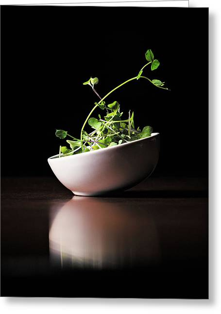 Micro Greens Greeting Card