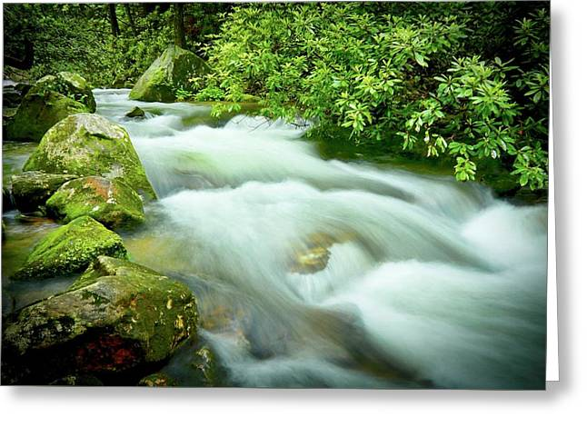 Middle Saluda River Flow Greeting Card