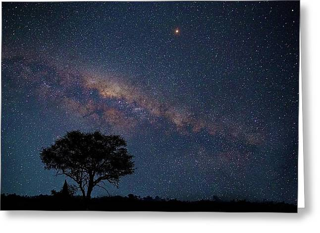 Milky Way Over Africa Greeting Card