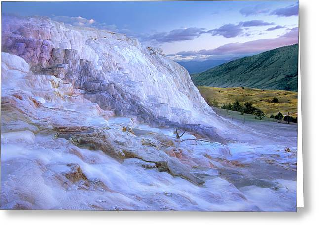 Minerva Terrace Hot Spring, Yellowstone Greeting Card