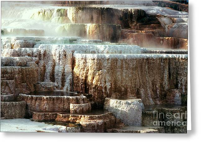 Minerva Terrace, Yellowstone National Greeting Card