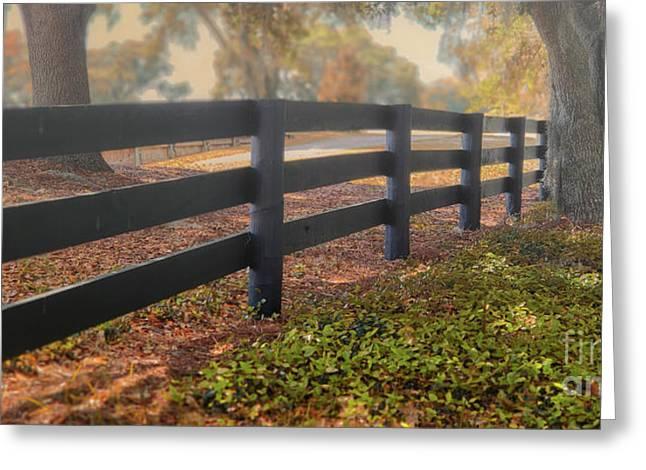 Misty Morning Walk Greeting Card