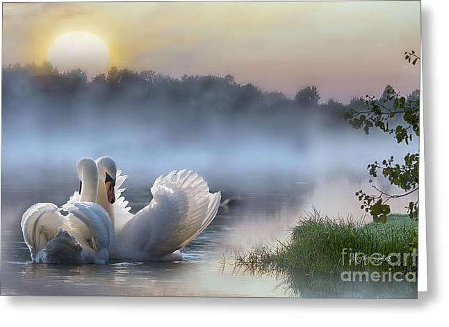 Misty Swan Lake Greeting Card
