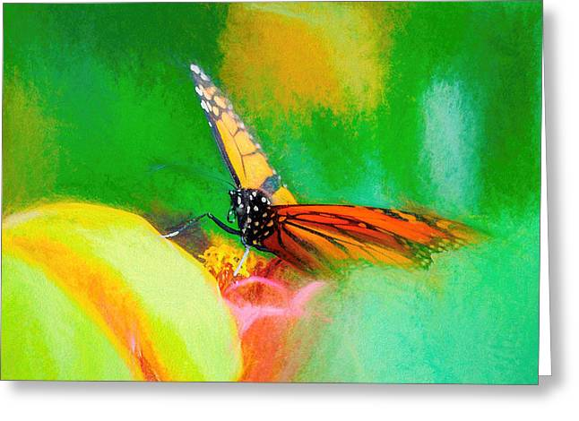 Monarch Butterfly Beautiful Smudge Greeting Card