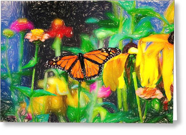 Monarch Butterfly Colored Pencil Greeting Card