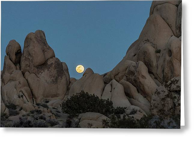Moonrise In The Sight Greeting Card