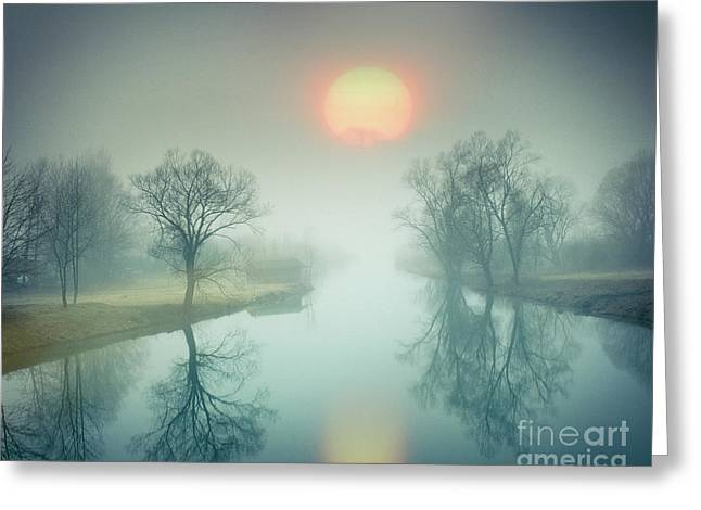 Greeting Card featuring the photograph Morning Mist by Edmund Nagele