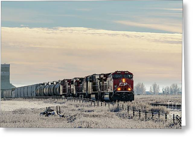 Greeting Card featuring the photograph Morning Run by Brad Allen Fine Art