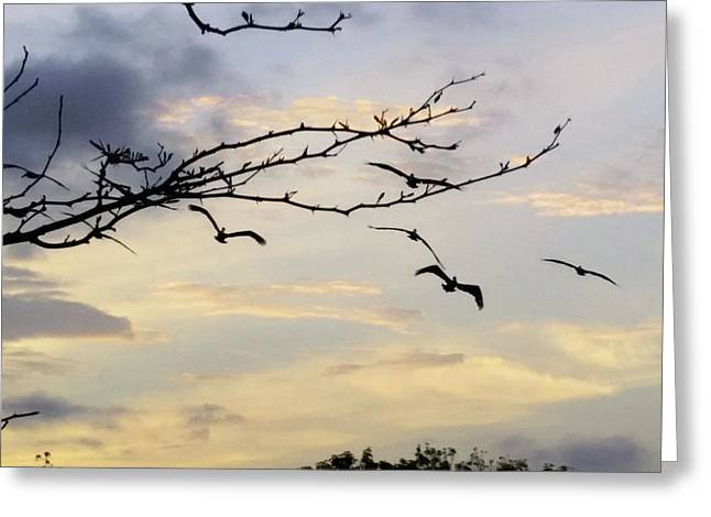 Morning Sky View Greeting Card