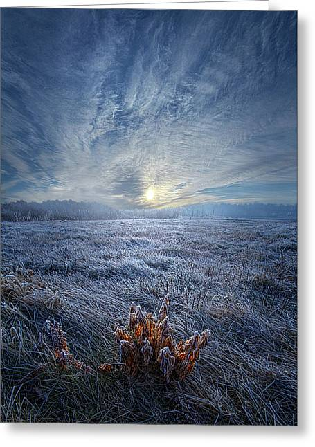 Greeting Card featuring the photograph Morning Time Blues by Phil Koch
