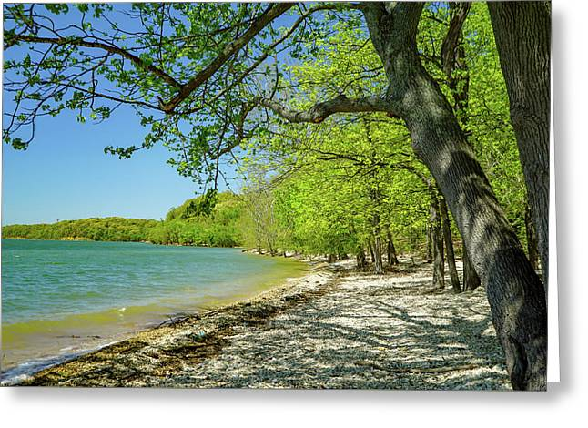 Moss Creek Beach Greeting Card