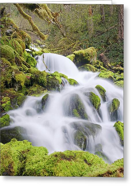 Greeting Card featuring the photograph Mossy Falls by Nicole Young