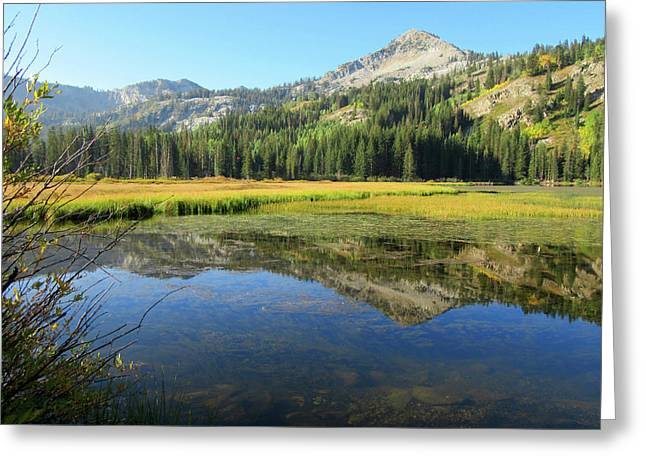 Mount Millicent Reflection Greeting Card