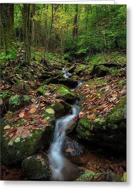 Mountain Stream - Blue Ridge Parkway Greeting Card
