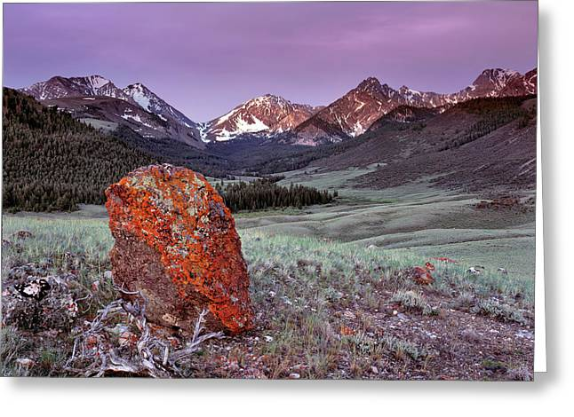 Mountain Textures And Light Greeting Card by Leland D Howard