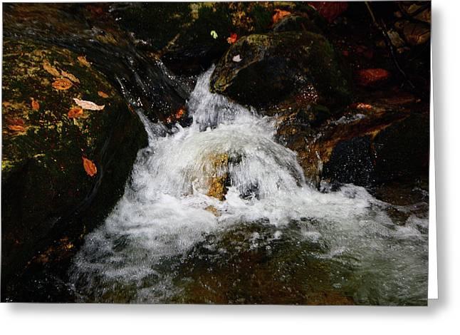 Greeting Card featuring the photograph Mountain Water by Raymond Salani III